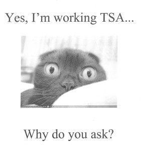 TSA Chipmunk
