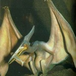brousblog2b Pterydactyl